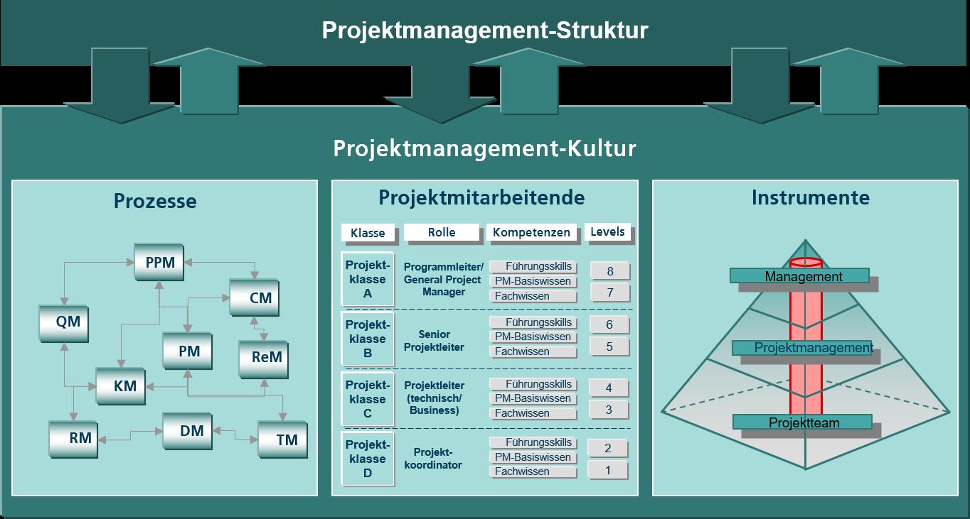 Grafische Darstellung der PM-Kultur mit den drei Bereichen Prozesse, Projektmitarbeitende und Instrumente